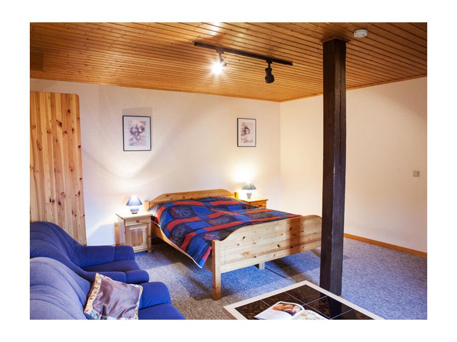 Wohn- und Schlafzimmer mit  Sat-TV