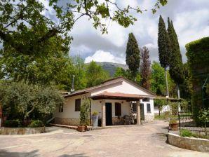 Ferienwohnung Casa Faggio