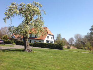 Ferienhaus Dycke Haus 6a