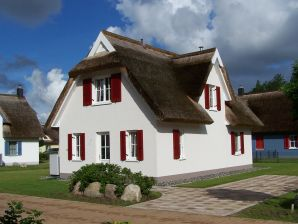Ferienhaus Seeschnecke
