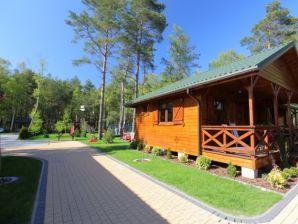 Ferienhaus DZIEDZIC für 4 Personen in Dabki