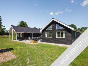 Ferienhaus Schlei Aktivitätshaus (T203)