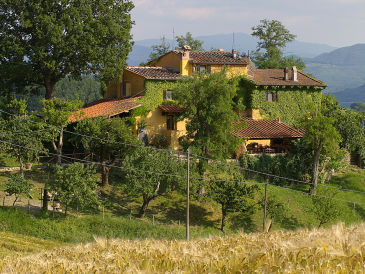 "Holiday house Farmhouse ""Le Due Volpi"""