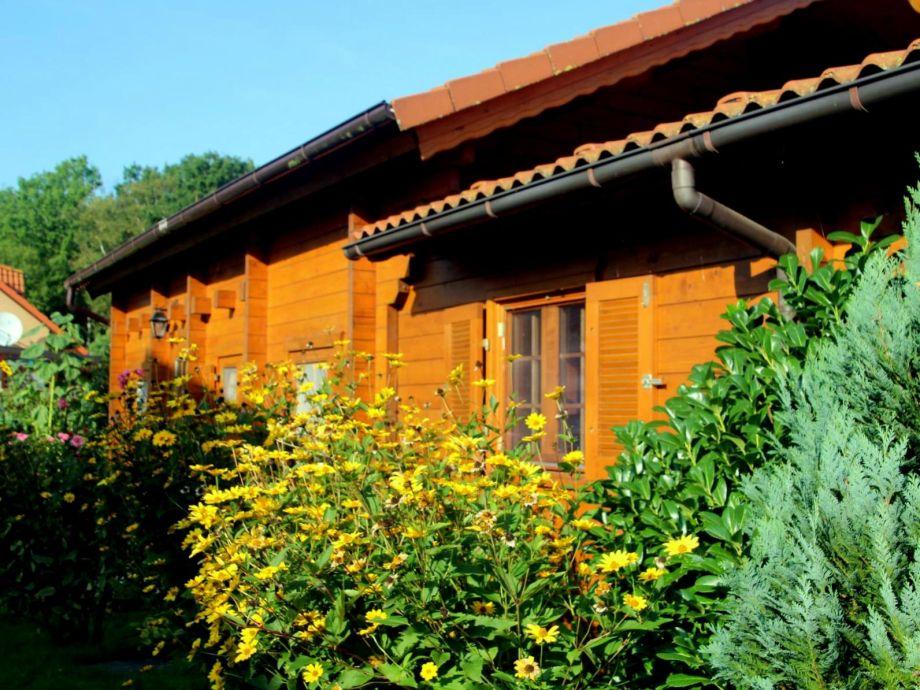 schönes und großes Holzaus mit 59 qm Wohnfläche