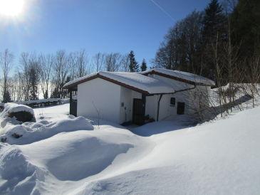Ferienhaus Sonnenwaldbungalow 12