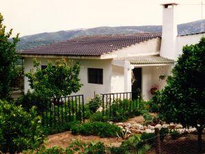 """Ferienhaus auf der """"Quinta da Vale do Riso"""""""