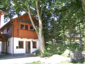 Ferienhaus Lungau