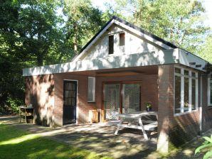 Ferienhaus Bosrijk