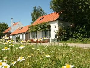 Ferienhaus De Zeeschelp