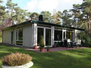 Ferienhaus Ruischende Dennen