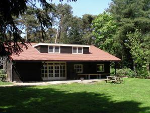 Ferienhaus Buitenhuis D'n Weijer