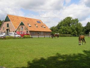 Ferienhaus Het Geurkinkhuis