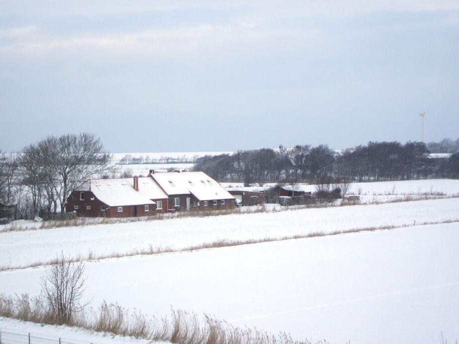 Haus Deichblick im Winter