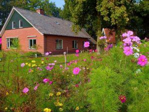 Ferienhaus Natuurlijk Twente