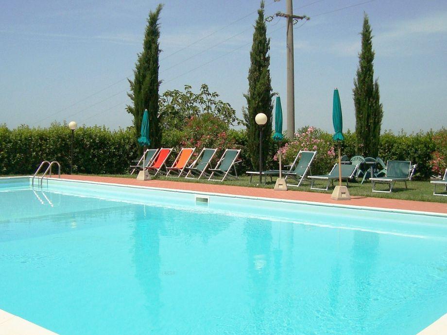 Schöner Pool im Garten
