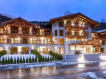 Ferienwohnung Saalbach Lodges Penthouse 3