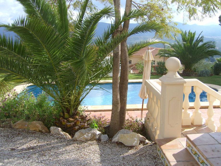 Pool und Teil des Gartens