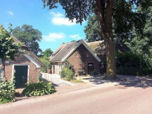 Ferienhaus Klein Magisch Drenthe