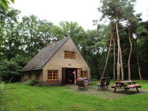 Ferienhaus De Wildenberg