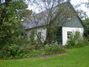 Ferienhaus It lytse gea