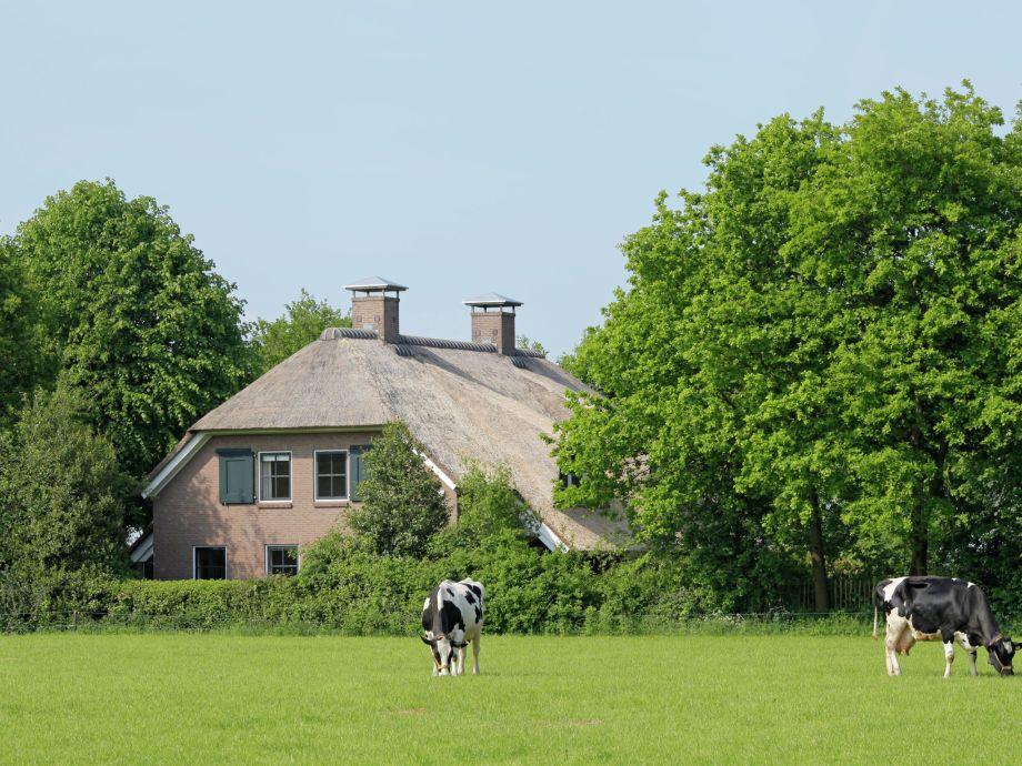 Außenaufnahme Luxe in Drenthe