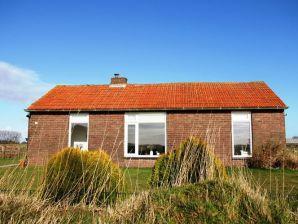 Ferienhaus Het Landhuisje