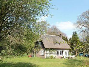 Ferienhaus Tuinhuis Water en Duinen 4 pers