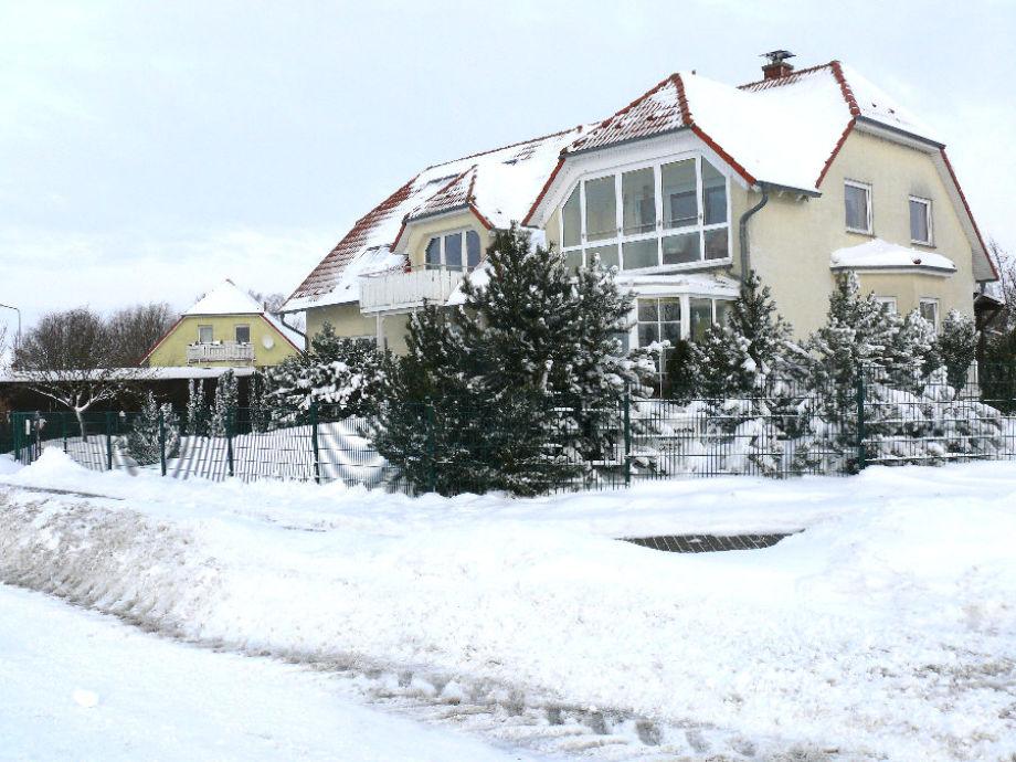Schneewinter 2010