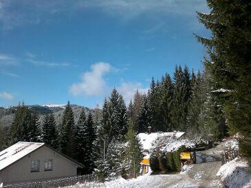 Ferienhaus Sonnenheim
