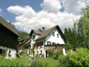 Ferienhaus Weissensee