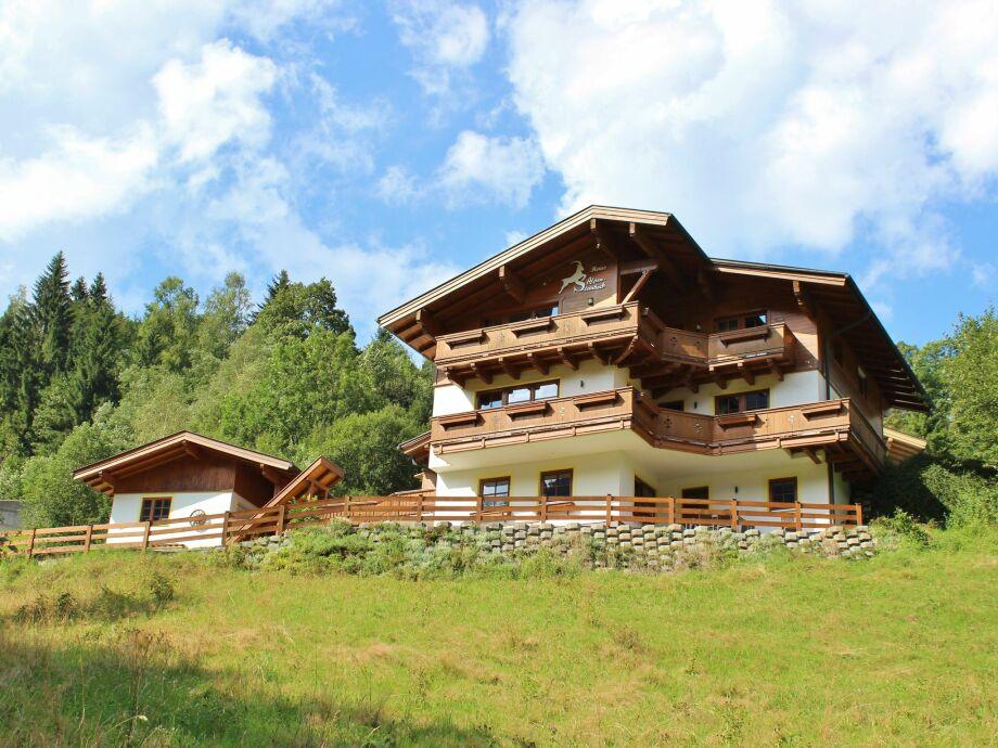 Außenaufnahme Alpensteinbock Saalbach L