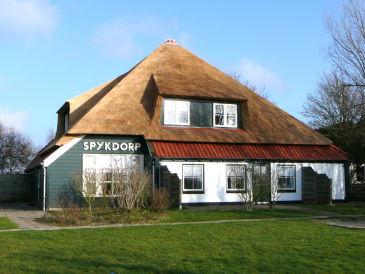 Gemütliche Ferienwohnung auf Texel, kleinere Wohnung