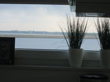 Ferienhaus Küste & Strand