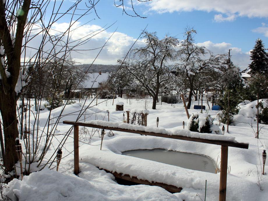 Winter im Kräutergarten