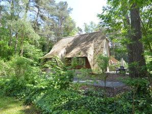 Villa de Zwaan