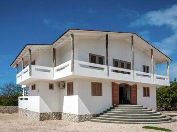 Villa Sunny Dive