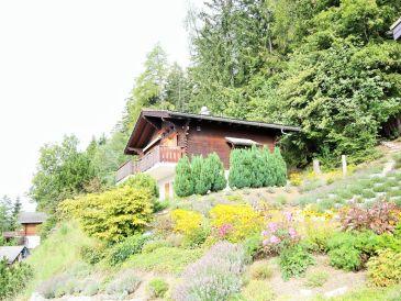 Ferienhaus Vue des Alpes