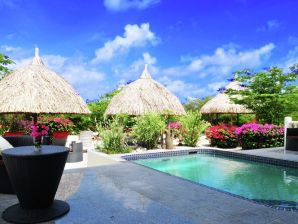 Villa Caribbean Sea - Coral Estate 6-pers