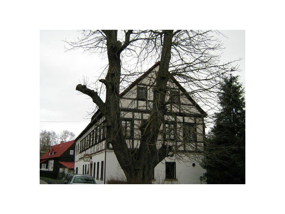 Außenaufnahme Landhaus Rynartice