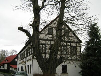 Landhaus Rynartice