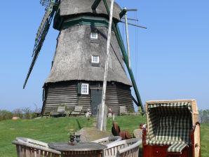Ferienhaus Farver Mühle