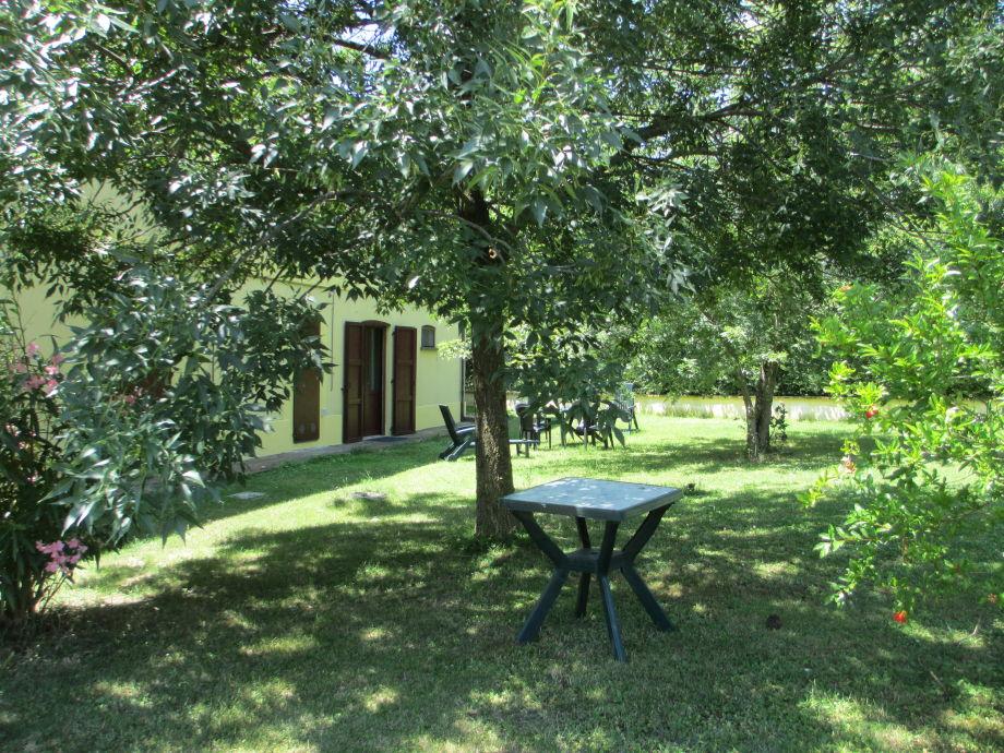 Unter alten Olivenbäumen lässt es sich gut ruhen