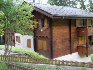 Ferienwohnung Vieux Valais A