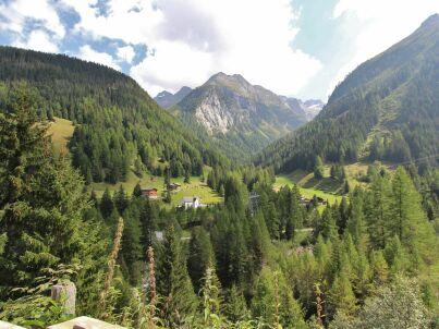 Saflischgarten II