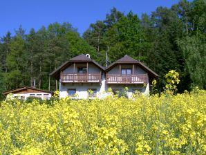 Ferienhaus Oldrich
