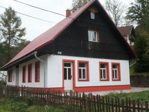 Ferienhaus Huis Javornik