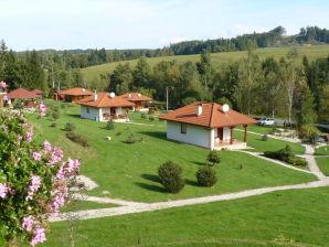 Ferienhaus Svojanov  Motylek