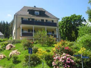 Ferienwohnung Villa Goldbrunnen
