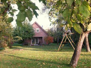 Ferienhaus Im Aller-Leine-Tal
