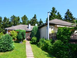 Ferienhaus Diemelsee